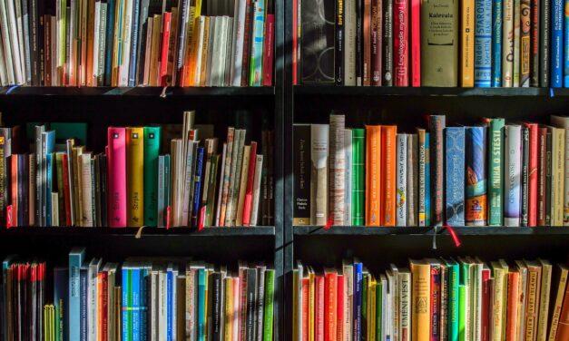 Le samedi 4 septembre ouverture de la librairie de livres d'occasion